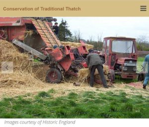 Conservation of Thatch 2017