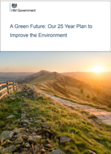 25 year environment plan