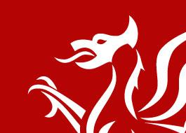 Wales Gov welsh dragon